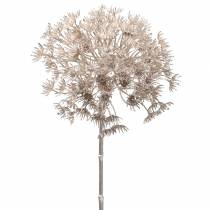 Allium Rosé-Gold Metallic 80cm
