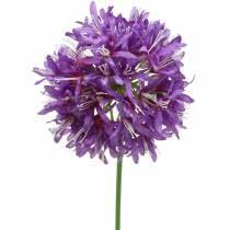 Zierlauch Allium künstlich Lila Ø12cm H62cm