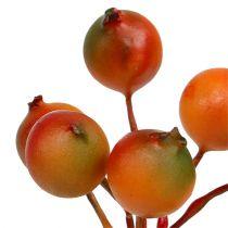 Beerenpick Orange 12 Bündel
