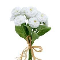 Bellisstrauß Weiß 24cm 3St