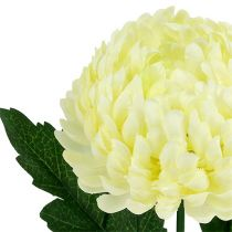 Chrysantheme Creme künstlich Ø7cm L18cm
