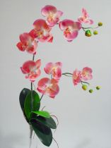 Orchidee 2 Zweige 60cm Rosa