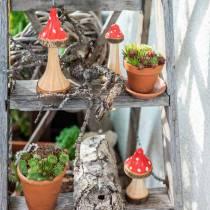 Deko Fliegenpilze aus Holz Rot, Natur 13,5cm - 19cm 3St
