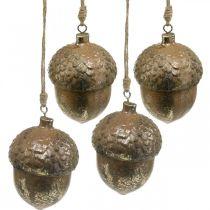 Dekoanhänger Eichel, Herbstfrüchte, Christbaumschmuck mit Golddekor H8cm Ø6cm 4St