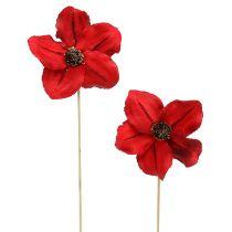 Holzblüte als Stecker Rot Ø9cm - 12cm L45cm 15St