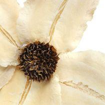 Holzblüte als Stecker gebleicht Ø9-12cm L45cm 15St