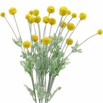 Trommelstöckchen Gelb Künstliche Craspedia Seidenblumen