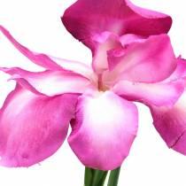 Schwertlilie künstlich Pink 78cm