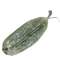 Luffa Frucht Grün 14cm 10St