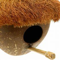 Kokosnuss als Nistkasten, Vogelhaus zum Hängen, Kokosnuss-Deko Ø16cm L46cm