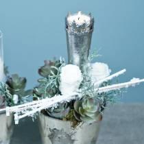 Konservierte Rosen Medium Ø4-4,5cm Weiß 8St