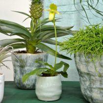 Mini-Übertopf, Keramikgefäß, Deko-Windlicht, Pflanztopf Wellenmuster Ø8cm 6St