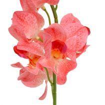 Orchidee Mokara Lachs 50cm 6St