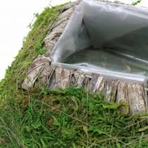 Pflanzkissen Moos, Rinde 20cm × 20cm