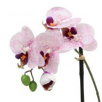 Künstliche Phalaenopsis Lila-Weiß in Schale H38cm