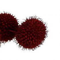 Platanen Früchte getrocknet Dunkelrot 250g