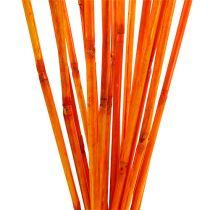 Rattan Stiele Orange 100cm 20St.