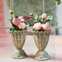Rose im Glas Rosa H23cm