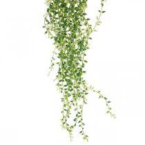 Sukkulente hängend künstlich Hängepflanze Grün 96cm