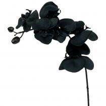 Orchidee zum Dekorieren Schwarz 54cm