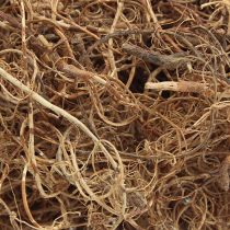 Deko Faser Tamarind Fibre Natur Bastelmaterial Naturfaser 500g