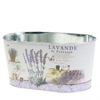 Pflanzschale Lavendel oval 22,5cm x 13,5cm H11cm