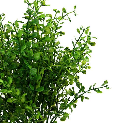 Gr npflanzen deko busch l30cm kaufen in schweiz for Deko grunpflanzen
