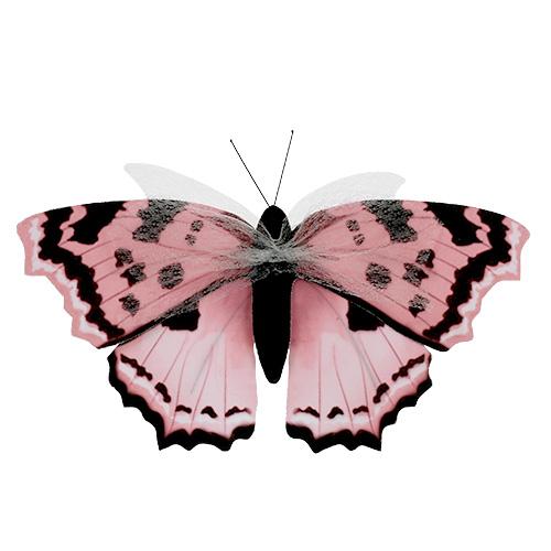 schmetterling rosa 20cm am draht 2st kaufen in schweiz. Black Bedroom Furniture Sets. Home Design Ideas