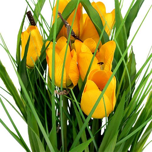 tulpen im topf gelb 30cm kaufen in schweiz. Black Bedroom Furniture Sets. Home Design Ideas