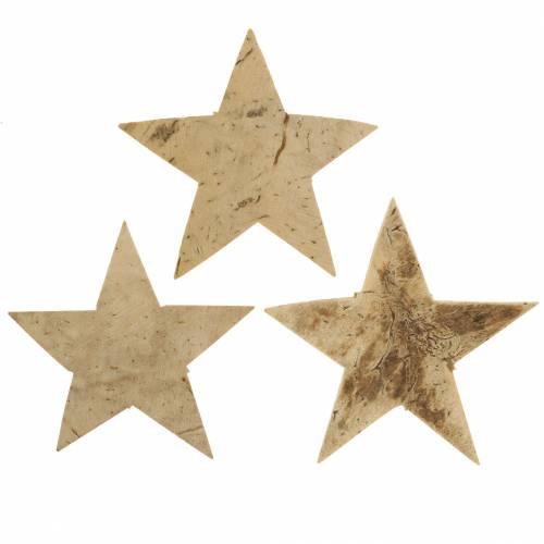 Kokos Stern Natur 5cm 50St