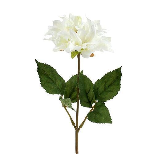 Dahlie Weiß 28cm 4St