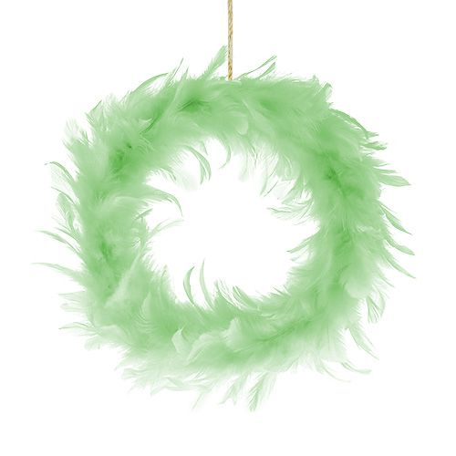Federkranz Hellgrün Ø15cm 4St