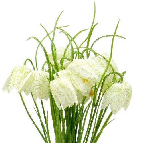 Schachbrettblumen Fritillaria künstlich Weiß, Grün 40cm 12St