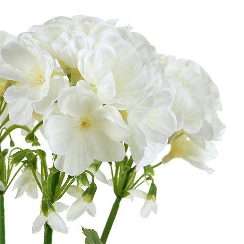 Geranienbusch Weiß 36cm
