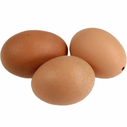 Hühnereier braun 12St