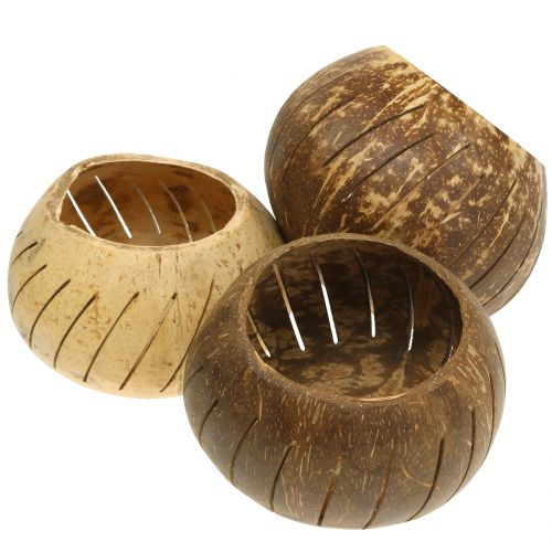 Kokosnuss Schale poliert mit Streifen Natur Ø12cm – Ø14cm 1St
