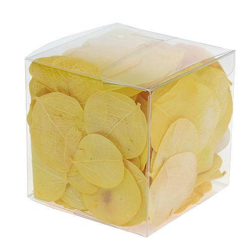 Monetablätter Limette 50gr