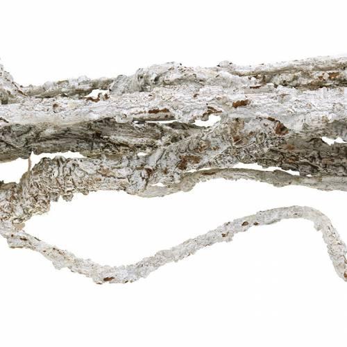 Korkeichen Zweige Muruku Zweige Weiß 100cm 10St