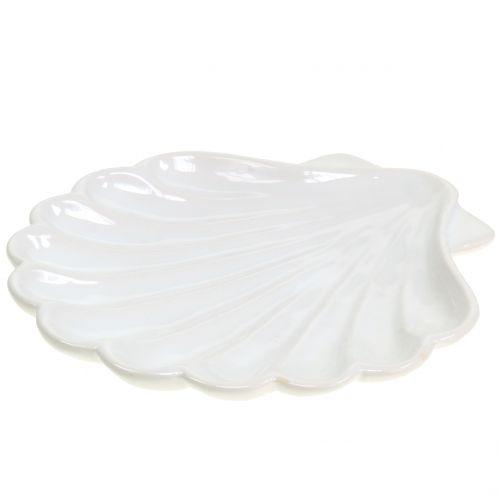 Dekoschale Muschel Weiß 15cm x 16cm 3St