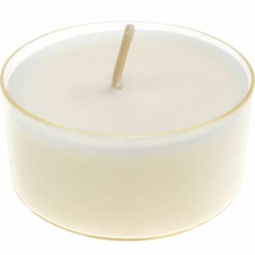 Teelichter Pure Nature Lights Brenndauer 10 Stunden Kerzen Rapswachs 8St
