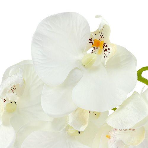 orchidee wei k nstlich l73cm 4st kaufen in schweiz. Black Bedroom Furniture Sets. Home Design Ideas