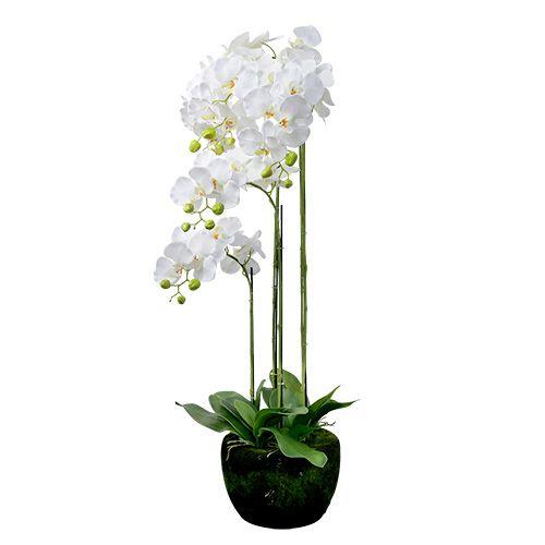 Orchidee Weiß mit Erdball 110cm