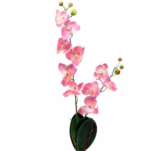 Orchidee champagner Kunstblume