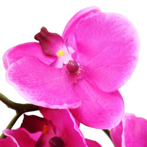 orchidee phalaenopsis pink 75cm kaufen in schweiz. Black Bedroom Furniture Sets. Home Design Ideas