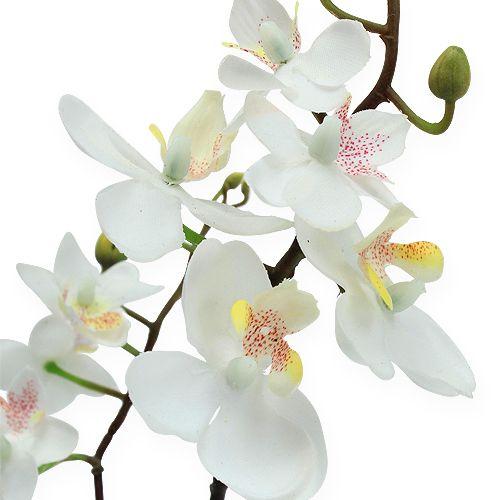 deko orchidee im topf wei 26cm kaufen in schweiz. Black Bedroom Furniture Sets. Home Design Ideas