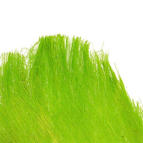 Palmfaser Pastell Hellgrün 400gr