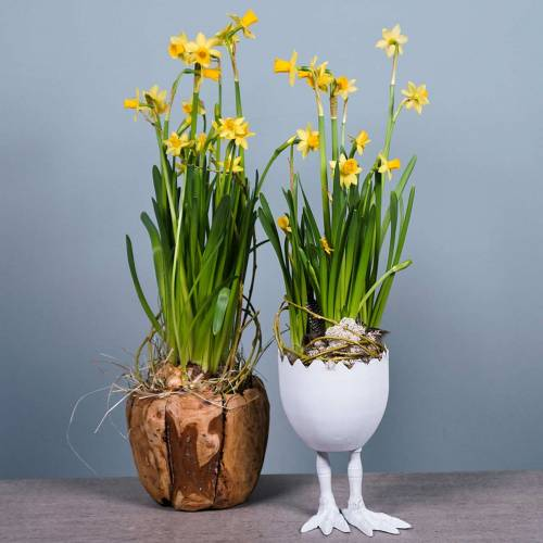 Pflanztopf Eierschale mit Beinen Ø13cm H21cm Weiß