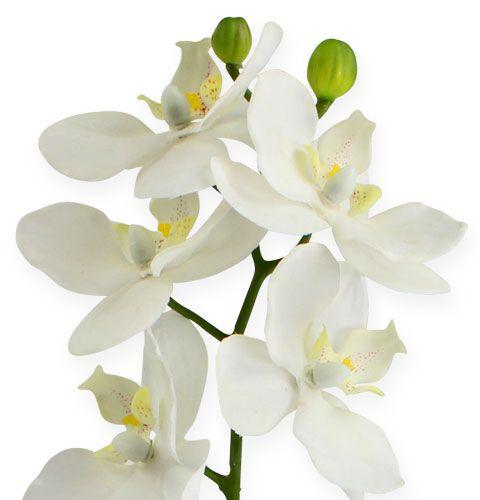k nstliche orchidee mit bl ttern wei 35cm kaufen in schweiz. Black Bedroom Furniture Sets. Home Design Ideas
