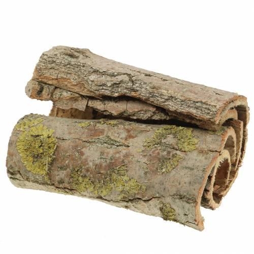 Baumrinde zum Basteln Natur 13cm 1kg