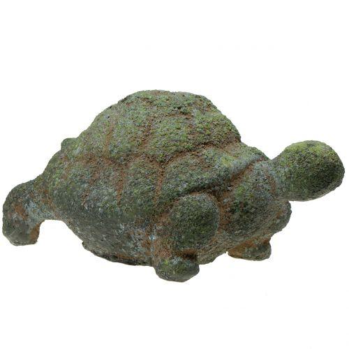 Gartenfigur Schildkröte bemoost 30cm x 18cm H15cm